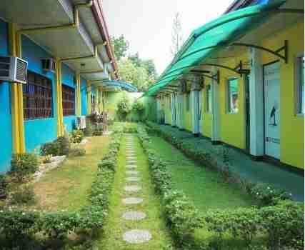 CIP Garden in between Main bldg. and J room
