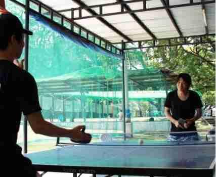 pingpong拷貝