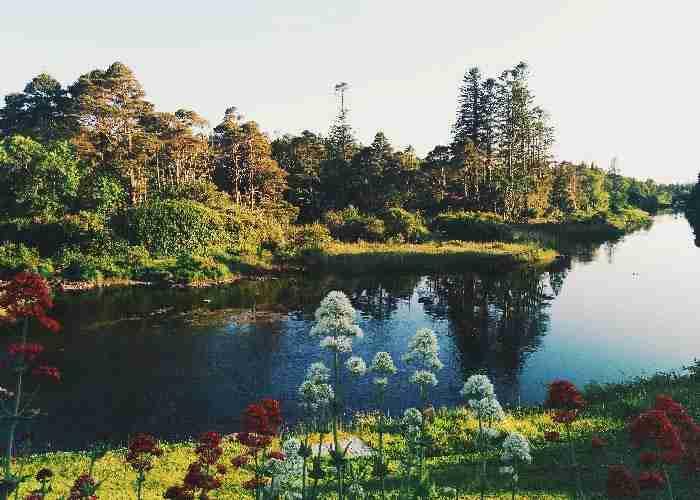 【愛爾蘭.都柏林】郊區一日遊這樣玩,5個不能錯過的景點!